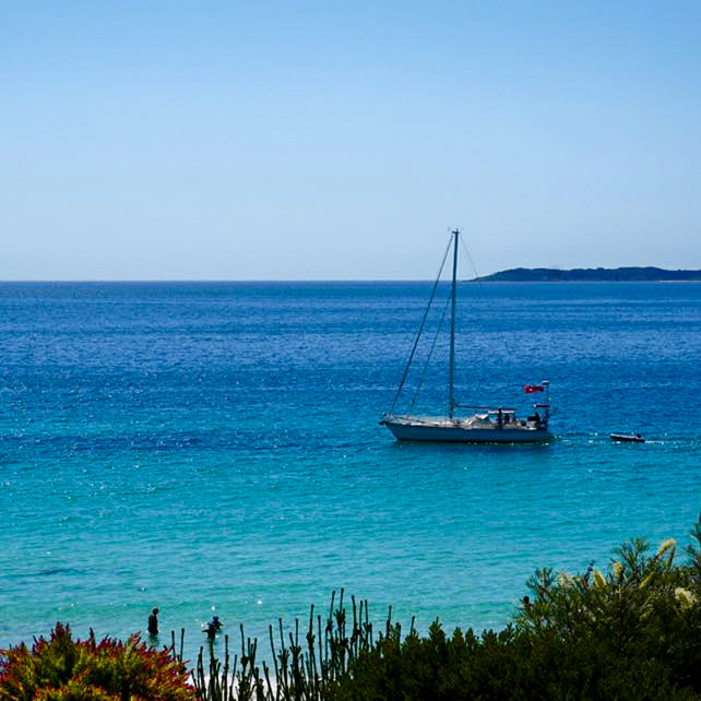 explore jervis bay from white sands hyams beach holiday house