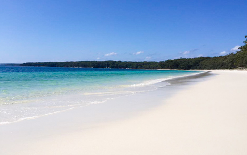 Beach Holiday Rentals South Coast Nsw